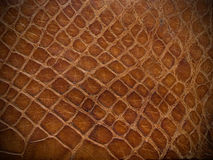 Bruine reptielleer dichte omhooggaand Royalty-vrije Stock Foto's