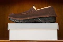 Bruine schoenen op doos Royalty-vrije Stock Foto's