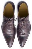 Bruine schoenen van hierboven Stock Fotografie