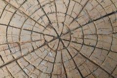 Bruine steen met barsten op de oppervlakte Stock Foto