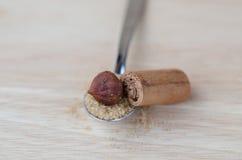 Bruine suiker Stock Afbeelding