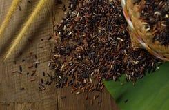 Bruine Thaise rijst 2 van ` s Stock Foto