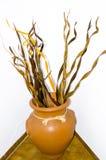 Bruine vaas met droog geïsoleerd hout Royalty-vrije Stock Foto