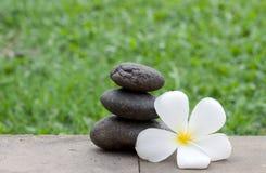 Bruine vlakke stenen in blance in de tuin Stock Afbeelding