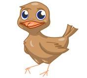 Bruine vogel Stock Afbeelding