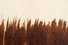 Bruine waterverftexturen stock afbeeldingen
