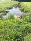 Bruine waterweg Royalty-vrije Stock Foto's