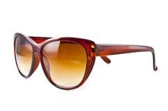 Bruine zonnebril Stock Foto's