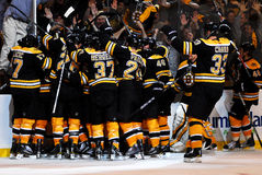 Bruins Celebrate!. Boston Bruins celebrate and overtime goal to give them a victory Royalty Free Stock Photo