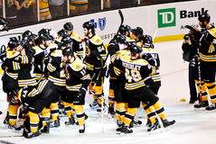 Bruins celebrate a victory. Stock Images