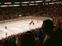 Bruins crowd celebrates ice hockey goal Stock Photo