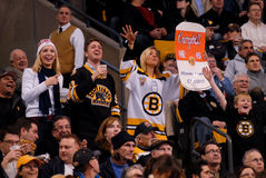 Bruins fans Stock Photo