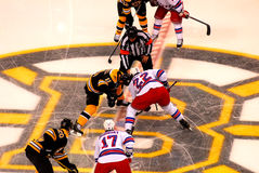 Bruins and Rangers face-off (NHL Hockey) Royalty Free Stock Image