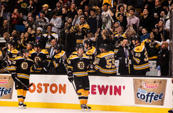 Bruins Score! Royalty Free Stock Image