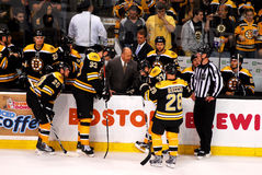 Bruins Time-Out Royalty Free Stock Images