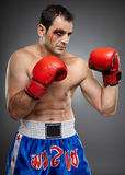 Bruised fighter ready to punch Royalty Free Stock Photo