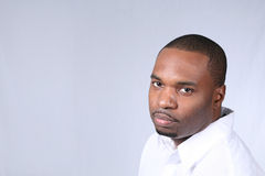 Bruiser Stock Photography