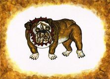 Bruiser Royalty Free Stock Images