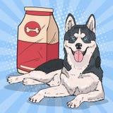 Bruit Art Husky Dog avec le grand paquet de nourriture Images stock