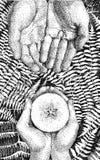 bruja Fotografía de archivo libre de regalías