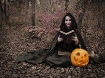 Bruja con el libro mágico 4 Foto de archivo