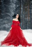 Bruja de la mujer en vestido rojo y con el cuervo en su hombro en nevoso Imagen de archivo libre de regalías