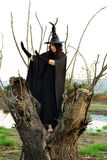 Bruja de Víspera de Todos los Santos Imagen de archivo libre de regalías