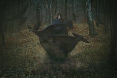 Bruja del bosque con sus cuervos Imagenes de archivo