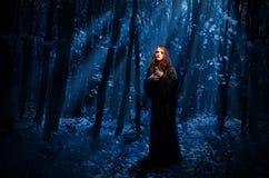 Bruja en el bosque de la noche fotografía de archivo