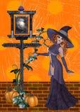 Bruja en fondo anaranjado Foto de archivo