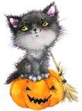Bruja y calabaza del gato del día de fiesta de Halloween pequeñas Ilustración de la acuarela Imagenes de archivo