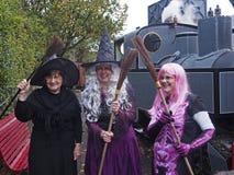 Brujas de Halloween Fotografía de archivo