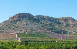 Bruka fält på grunden av kullar och växande fält för liten berglokalsamhället Jordbruk i lantliga Spanien Fotografering för Bildbyråer