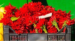 Bruka peppar för den varma chili på en räknare i marknaden Fotografering för Bildbyråer