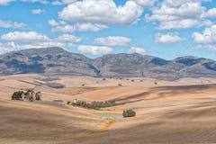 Bruka platsen bredvid den Middelplaas vägen nära Caledon Royaltyfria Bilder