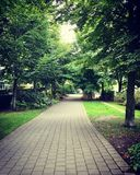 Brukarz ścieżka przez drzew Obraz Royalty Free