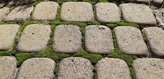 Brukowe cegiełki z trawą Brukowa pasiasty droga przemian Szczegół antyczna drogowa powierzchnia Popielaty brukowych kamieni zbliż obraz stock