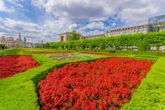 BRUKSELA, BELGIA - 11 SIERPIEŃ, 2015: Piękna czerwień Fotografia Royalty Free