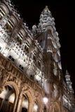 Brukselscy zima cudy - 02 Obrazy Stock