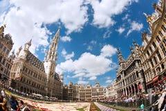 Brukselski kwiatu dywan 2016 Fotografia Royalty Free