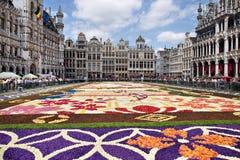 Brukselski kwiatu dywan 2016 Zdjęcie Stock