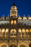 Brukselski Muzeum Obrazy Royalty Free