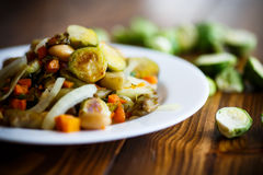 Brukselskie flance piec z warzywami i fasolami obrazy stock