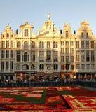Brukselskiego Belgia kwiatu Dywanowego festiwalu Uroczysty miejsce Fotografia Stock