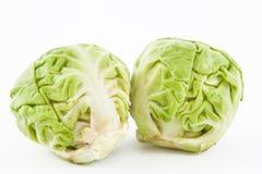Brukselskiej flancy Brassica oleracea var gemmifera Obrazy Stock
