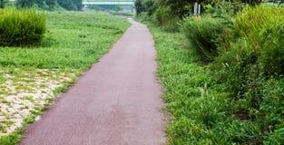 Brukujący przejście w parku Obraz Royalty Free
