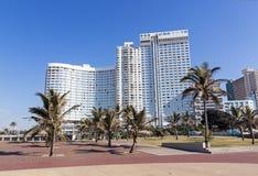 Brukujący drzewka palmowe Przeciw miasto linii horyzontu i deptak Obrazy Royalty Free
