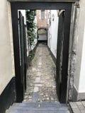 Brukuje Kamiennego aleja sposób w Antwerp Obraz Stock