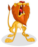 Brullende leeuw Royalty-vrije Stock Foto's