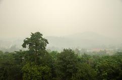 brume Image libre de droits